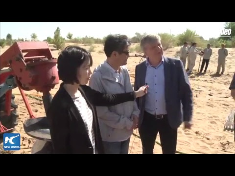 LIVE: Turning desert green: Find out the Chinese solution to desertification