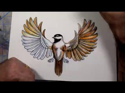 Speed Painting Watercolor Finch