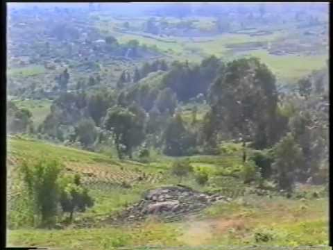Malawi's Green Revolution - PREVIEW