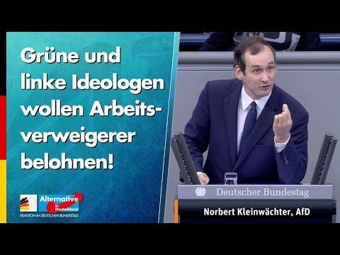 Grüne und linke Ideologen wollen Arbeitsverweigerer belohnen! - Norbert Kleinwächter - AfD-Fraktion