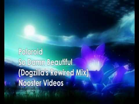 Poloroid - So Damn Beautiful ( Dogzillas Rewired Remix ) HQ