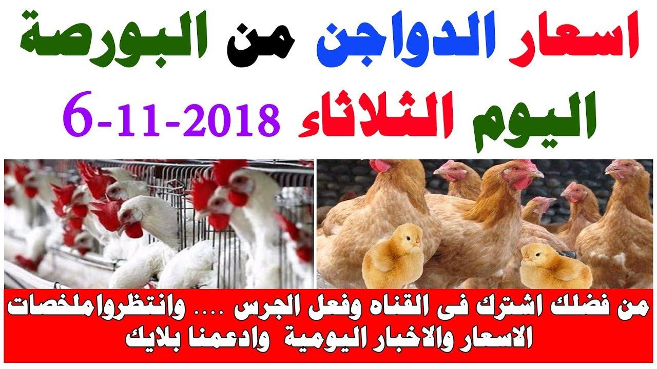 تعرف على اسعار الدواجن اليوم الثلاثاء 6-11-2018 من بورصة الدواجن المصرية