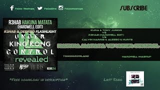 King Kong vs Hakuna Matata vs Under Control vs Flashlight (Hardwell Mashup)