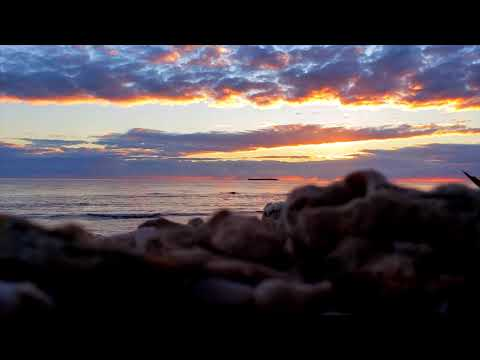 Israel Kamakawiwo'ole - Somewhere Over The Rainbow (Conkarah Cover) | Reggae 2019 | ConkarahMusic
