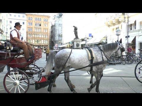 Great Walk around Vienna Austria.