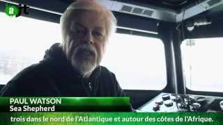 Sea Shepherd (Interview de Paul Watson) - Reportage AlterJT 03/03/2015 - 20