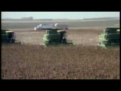 Sunflower Harvest in North Dakota - America's Heartland