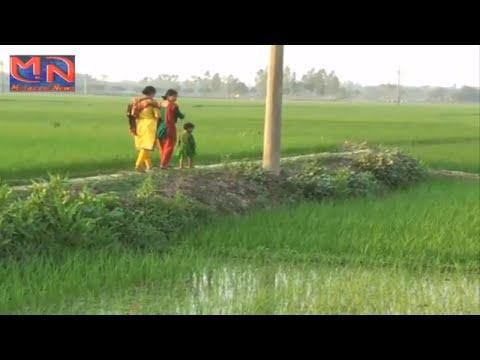 Bangladeshi farmer || Bangladesh agriculture news 2016