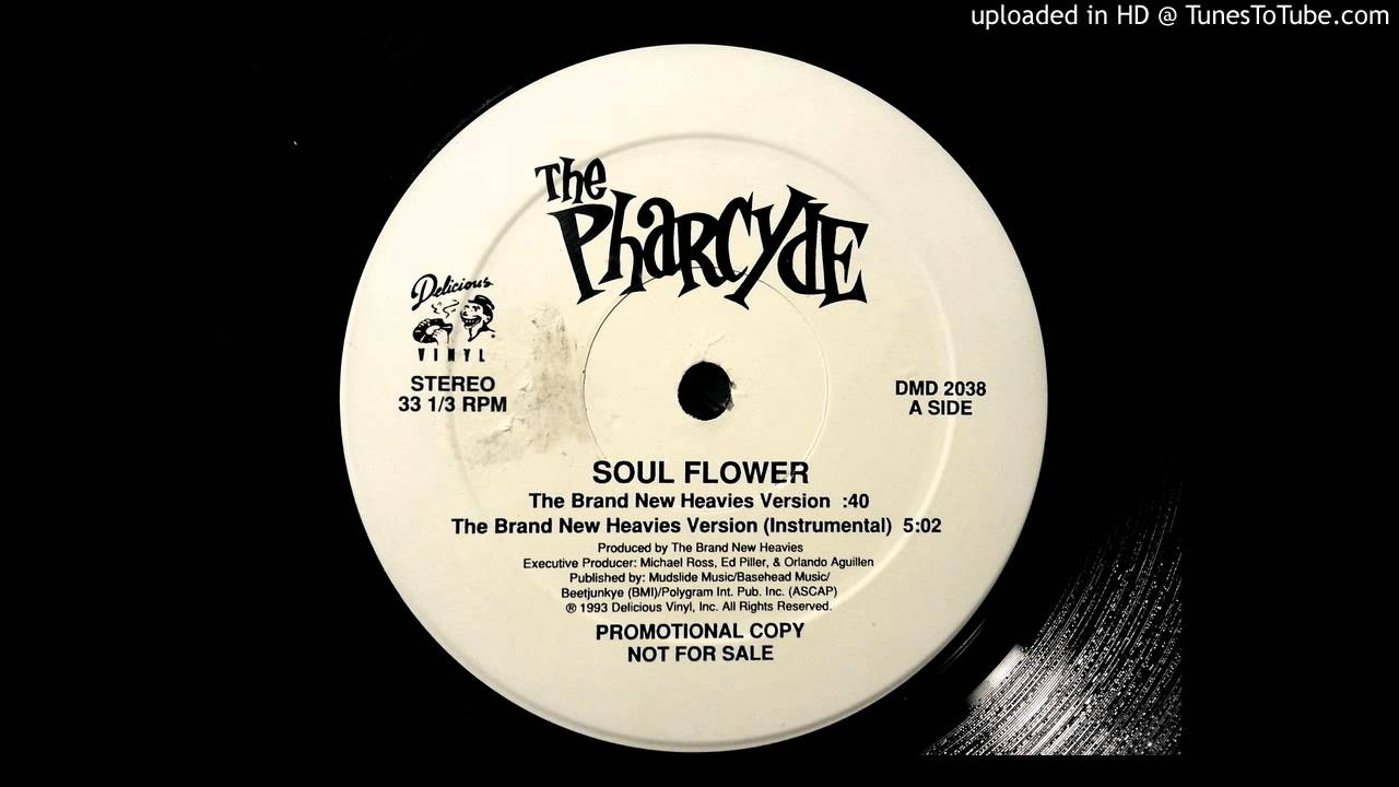 the-pharcyde-soulflower-the-brand-new-heavies-version-theironsifu