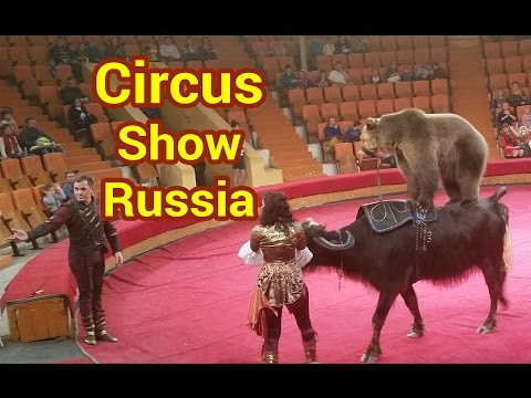 Circus show Russia