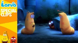 official strange larva 2 - fun clips from animation larva