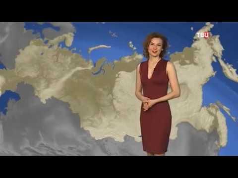 Погода сегодня в иркутске по часам сегодня и завтра
