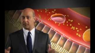 Почки и сахарный диабет 2 типа