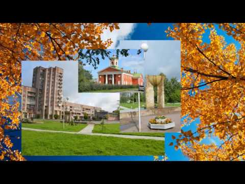 Наш город Отрадное /Gorod47.ru/