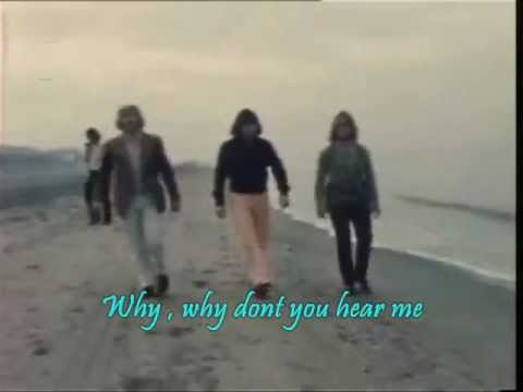 The Cats ~ Why.With Lyrics