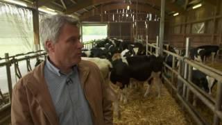 Wie gut ist unser Rindfleisch NDR Lebensmittel Check mit Tim Mälzer