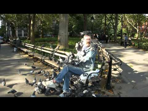 Paul, the Pigeon Man of Washington Square Park NYC