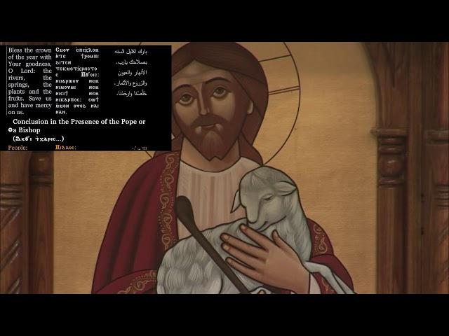 St. Mark Live Stream