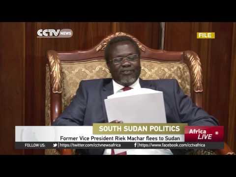 Former Vice President Riek Machar flees to Sudan