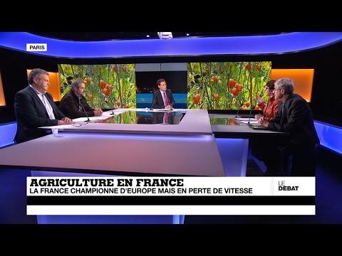Agriculture : la France championne d'Europe, mais en perte de vitesse (partie 1)