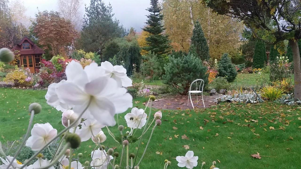 аптек дизайнерский сад марины соколовой фото для отдыхающих