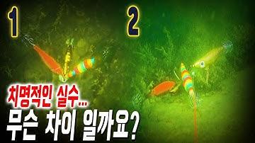 군산 문어 낚시 episode .채비에 대한 비밀을 밝히기 위해 수중 액션 촬영. 3시간 꽝치다 겨우 5마리 잡은 썰 (Octopus.lure.egi)