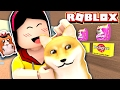 Adopting a Crazy Doge!! He's so CRAY! - Roblox Pet Shop Tycoon Mini Game - DOLLASTIC PLAYS!