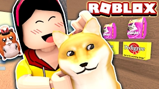 Adopter un doge fou! Il est tellement CRAY! - Roblox Pet Shop Tycoon Mini Jeu - DOLLASTIC PLAYS!
