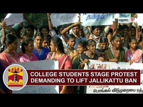College students stage protest demanding to lift Jallikattu Ban   Pudukkottai   Thanthi TV