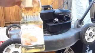 Peanut Oil in a Lawn Mower?
