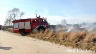 3 Hectare natuur verwoest bij brand op Asselseweg   Hoog Soeren 07 03 2015