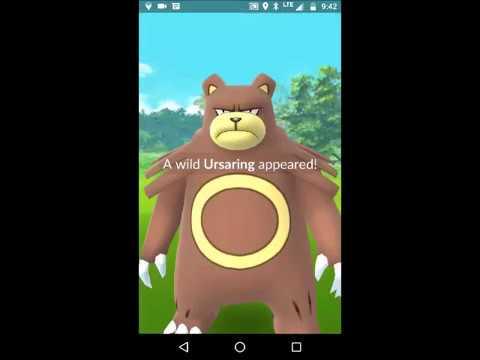 Catching Teddiursa and Ursaring Pokemon Go Gen 2 - YouTube  Catching Teddiu...