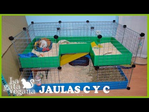 COMO HACER UNA JAULA C Y C PARA COBAYAS, CONEJOS , CHINCHILLAS, (CUYOS,COBAYO, CUY)  C&C CAGE