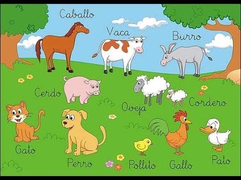 Vamos a aprender el nombre de los animales de una forma divertida