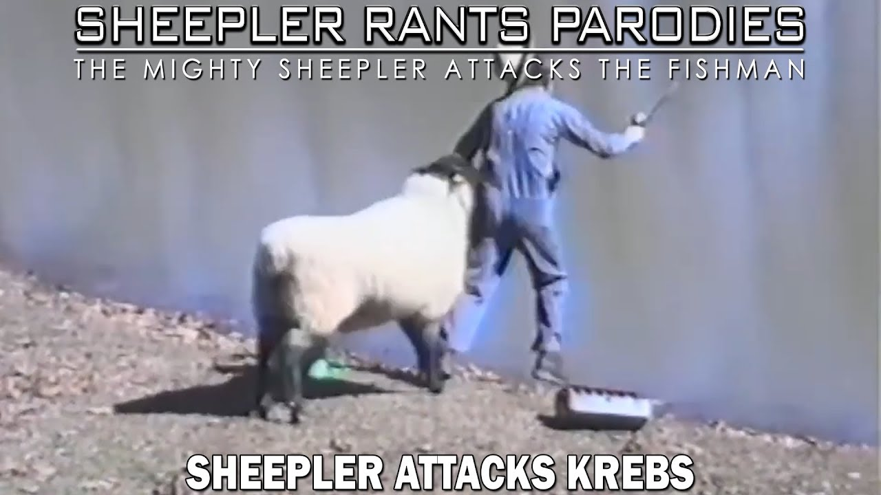 Sheepler attacks Krebs