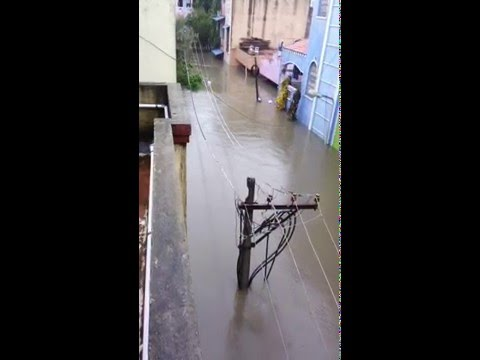 Chennai Flood 2015 Thiru Nagar Ashok Nagar photos