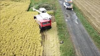 稲刈の様子をMavicで撮影してみました。今年の稲刈も終盤を迎えて刈り取...