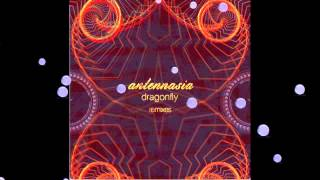 Antennasia - Ms. Zirkus (Brahj Remix)
