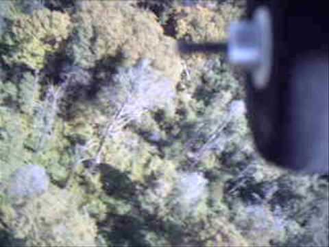 Flying over Pennsylvania - Flight 3, E-Flite Apprentice