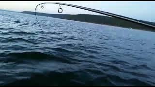 Ловля трофейной щуки на Иркутском водохранилище