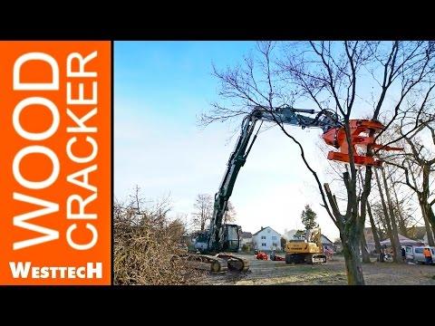 Woodcracker Demotag in Krumbach Germany
