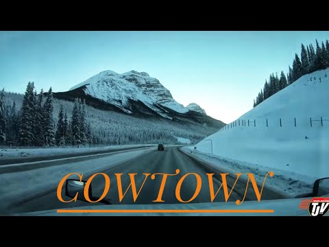 My Trucking Life - COWTOWN DELIVERIES - #1591