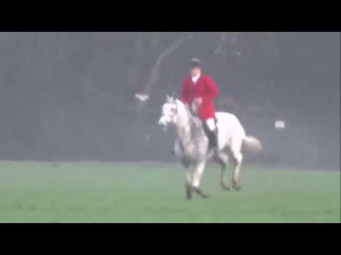 Cheshire Foxhounds Hunt 17/12/2016 - 'adapted' Calls Enabling Illegal Fox Hunting?