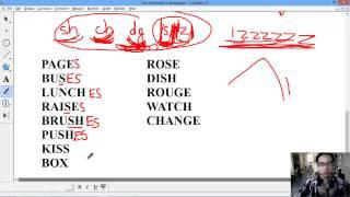 """[ANH VĂN] Học đọc 2 - Hướng dẫn đọc /s/ /z/ /iz/ và cách thêm số nhiều """"s"""" """"es"""" trong tiếng mỹ"""