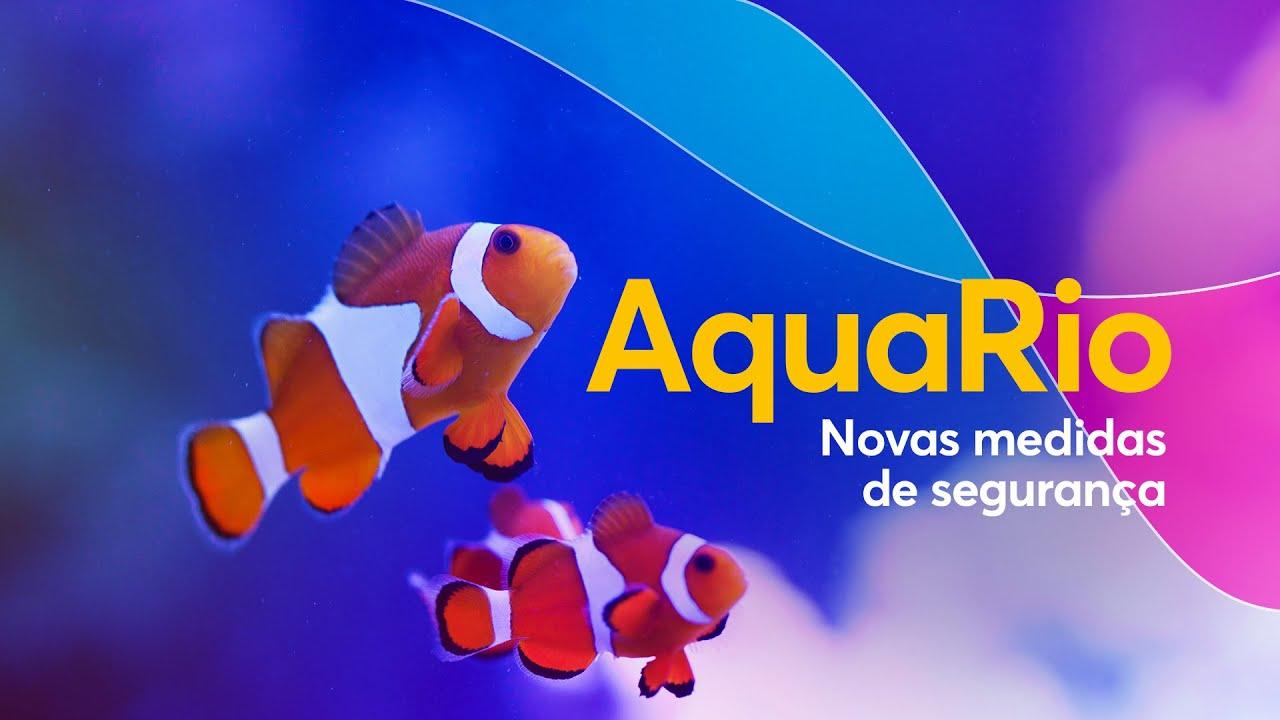 AquaRio | Conheça as novas medidas de segurança para visitação