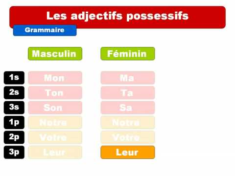 French Adjectives - Lawless French Grammar - Les adjectifs