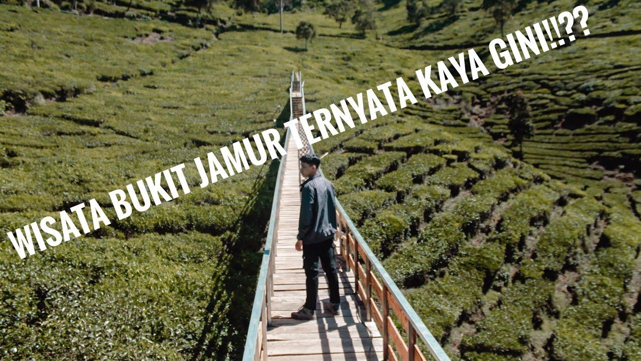 BUKIT JAMUR RANCABOLANG, kondisi dan situasi wisata bukit jamur ciwidey  rancabolang