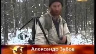"""""""Ошейник на охоте надо снимать"""" А.Зубов"""