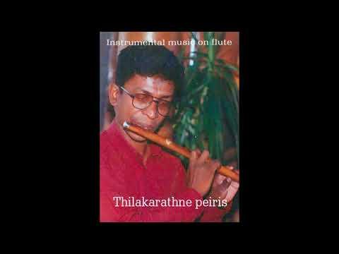 15)amma sandaki _Flute  cover _ Thilak