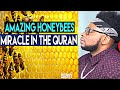 How Honeybees Prove The Existence of Allah (Must Watch!)